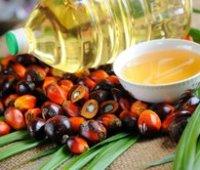 Рада одобрила введение запрета на использование пальмового масла