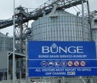 Компании из Испании и США построят завод по переработке кукурузы на Виннитчине