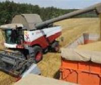 Минагрополитики сохраняет прогноз урожая зерновых вопреки засухе