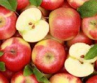 Рекордный урожай яблок в Украине привел к падению цен