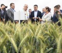 Аграрии могут обеспечивать до 25% ВВП Украины, – Гройсман