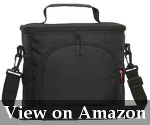 large insulated lunch bag review