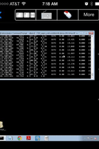 iVM Windows guest storage I/O activity