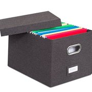 Internet's Best Collapsible File Storage Organizer with Lid
