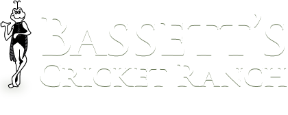 Bassett's Cricket Ranch