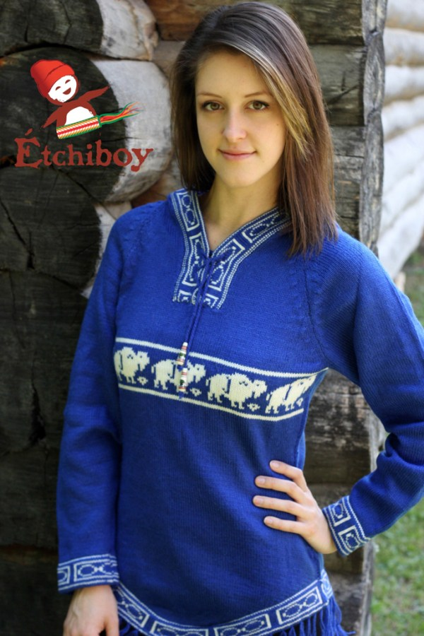 Hooded Blue Sweater With Bisons Chandail Bleu Avec Capuchon Avec Bisons 1