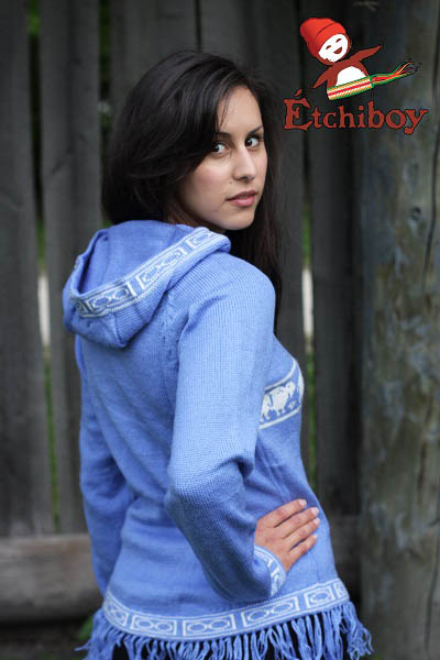 Hooded Light Blue Sweater With Bisons Chandail Bleu Pâle Avec Capuchon Avec Bisons 2