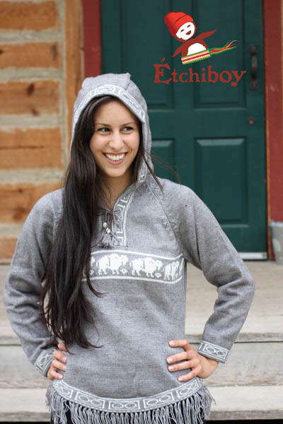Hooded Grey Sweater With Bisons Chandail Gris Avec Capuchon Avec Bisons 1