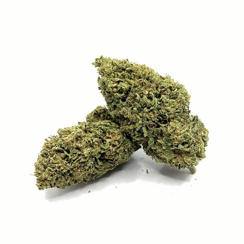 Got Hemp 2 - CBD Store - Hempress CBD Flower