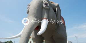 MARGATE, NJ – AUGUST 16: Lucy the Elephant on August 16, 2016 - Kelleher Photography Store