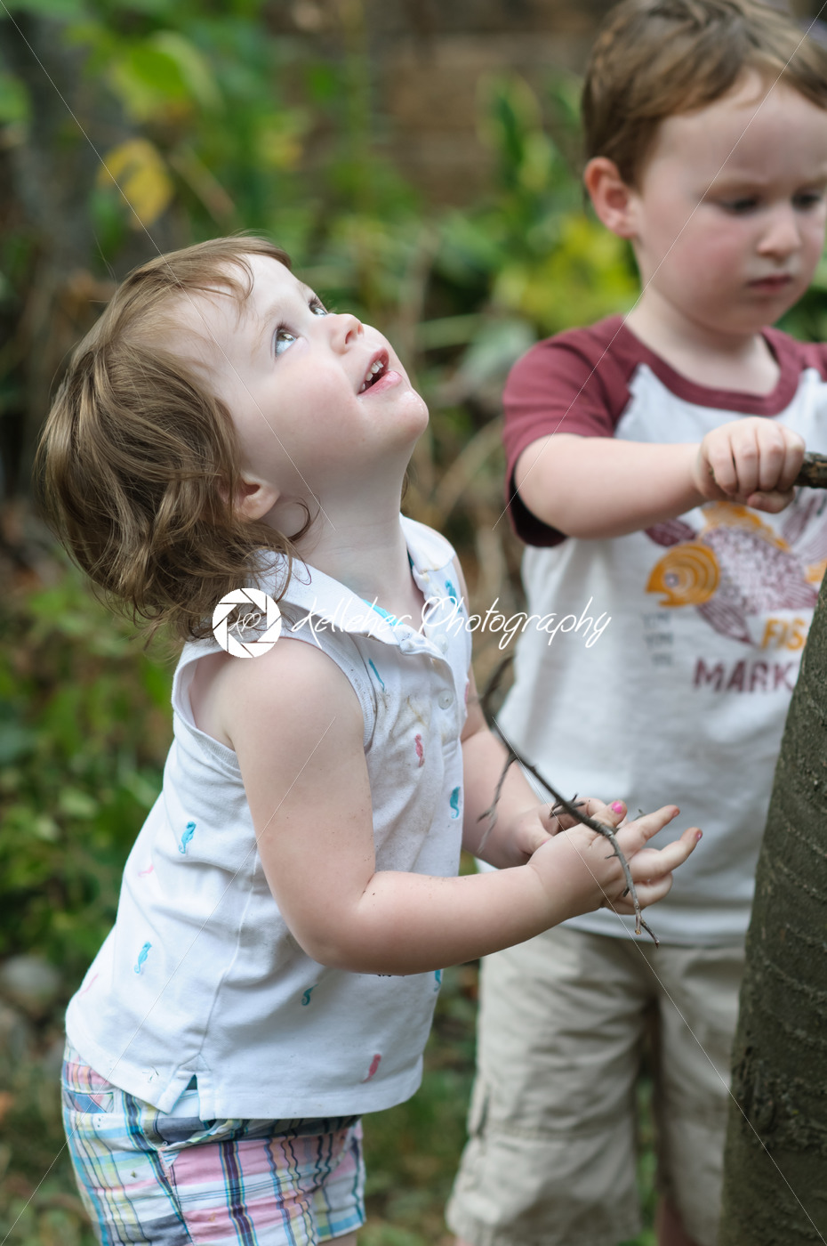 Young boy and girl looking up at a tree in the back yard - Kelleher Photography Store