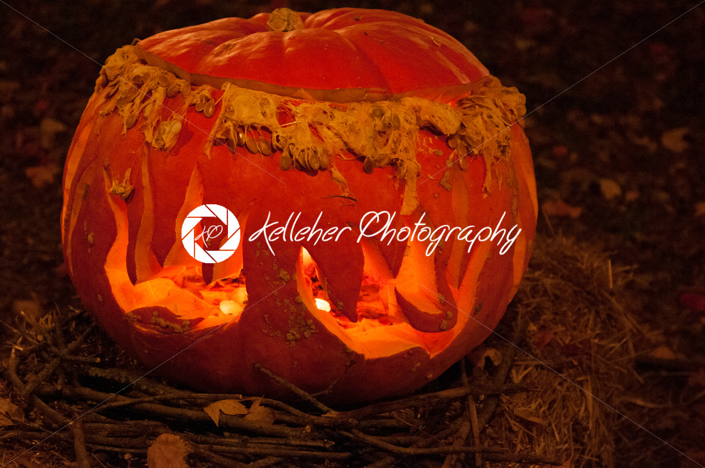 CHADDS FORD, PA – OCTOBER 26: The Great Pumpkin Carve carving contest on October 26, 2013 - Kelleher Photography Store