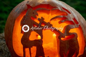 CHADDS FORD, PA – OCTOBER 18: Witch and Caludron at The Great Pumpkin Carve carving contest on October 18, 2018 - Kelleher Photography Store