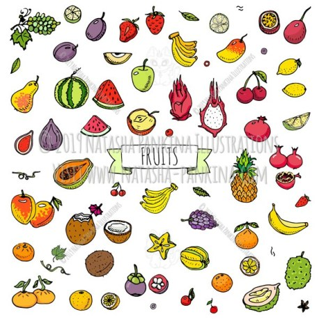 Fruits. Hand Drawn Doodle Fresh Food Colorful Icons Collection. - Natasha Pankina Illustrations