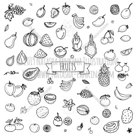 Fruits. Hand Drawn Doodle Fresh Food Icons Collection. - Natasha Pankina Illustrations