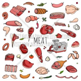 Meat. Hand Drawn Doodle Food Icons Collection. - Natasha Pankina Illustrations