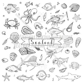 Seafood. Hand Drawn Doodle Food Icons Collection. - Natasha Pankina Illustrations