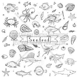 Seafood. Hand Drawn Doodle Food Icons Collection. - Natasha Pankina Illustrations