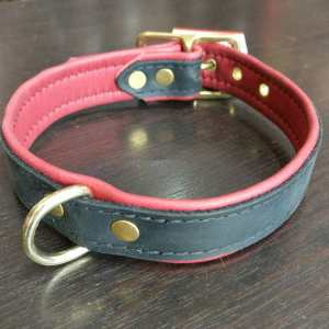 Boundaries Leather Leather COLLAR ACCESSORY | 25117