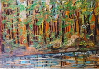 Sunbeams Amongst the Trees, Mississippi Lake