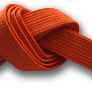 Shin Dao System of Transformation™ - Orange Belt