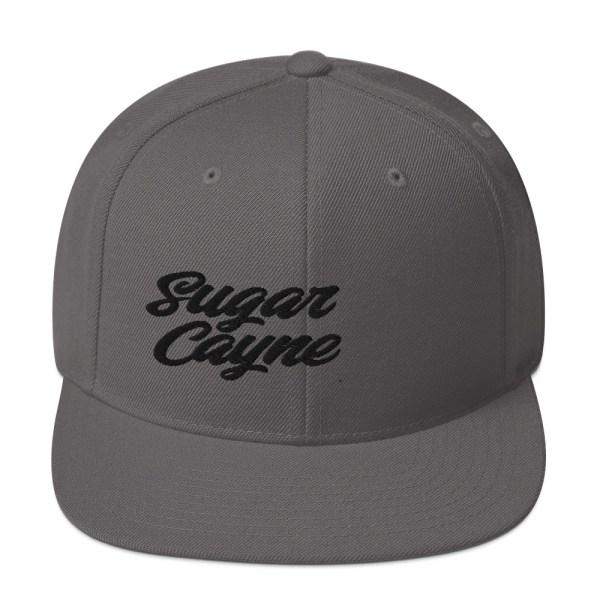 grey snap back hat