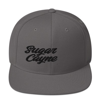 grey snap back hat