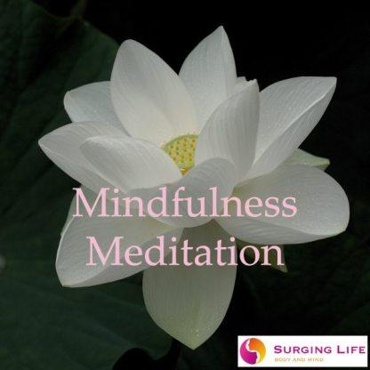 Guided Mindfulness Meditation mp3