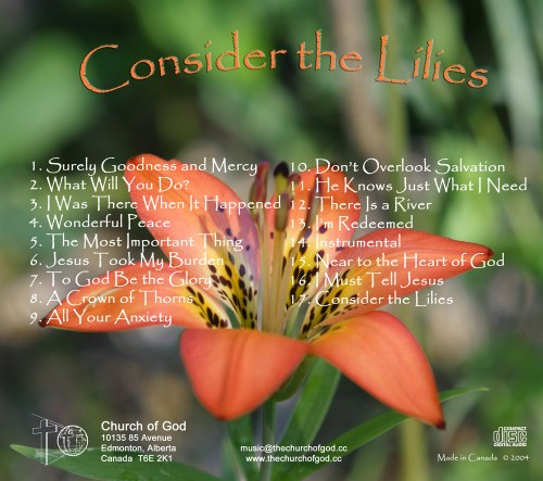 Consider-the-Lilies-Traycard