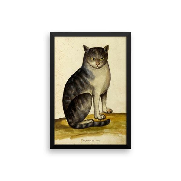 Ulisse Aldrovandi: Seated Cat, 16th Century, Framed Cat Art Poster, 12×16