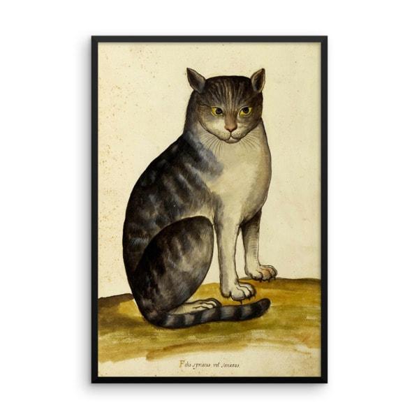 Ulisse Aldrovandi: Seated Cat, 16th Century, Framed Cat Art Poster, 16×20