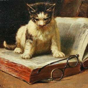 John Henry Dolph, Scholar 1881 at The Great Cat Store