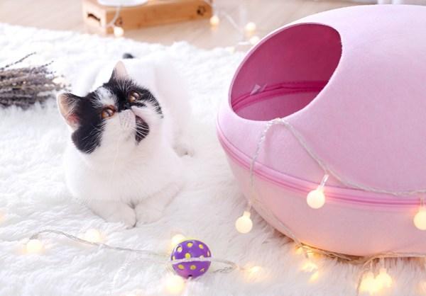 Cat Ball Nest 2