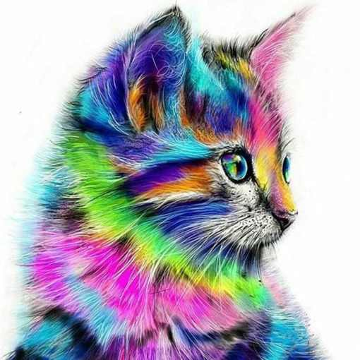 Unframed Canvas Kitten Face DIY Paint by Numbers Set