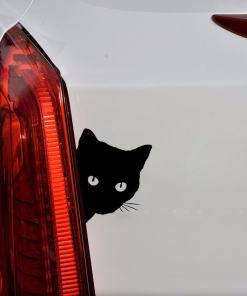 Peering Cat Face Car Sticker Decal at The Great Cat Store