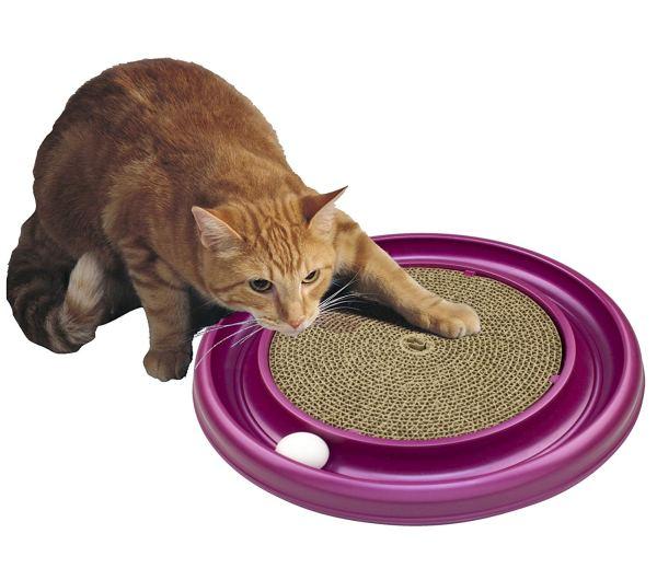 bergen cat toy