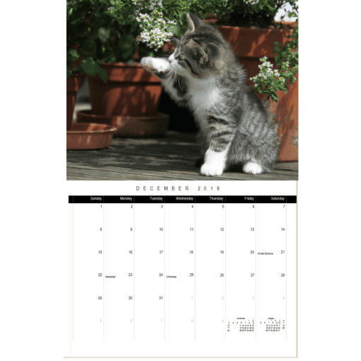 Cats and Flowers 2020 Wall Calendar December