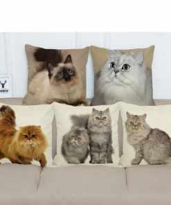 Persian Cat Linen Pillow Cases