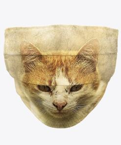 Ginger Cat Face Mask