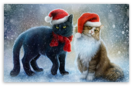 12 Christmas Movies Featuring Cats