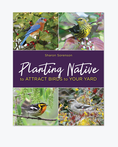 Planting Native