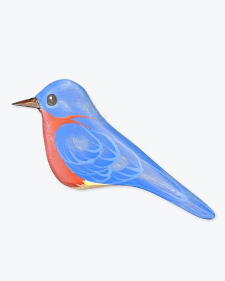 GS-Eastern-Bluebird