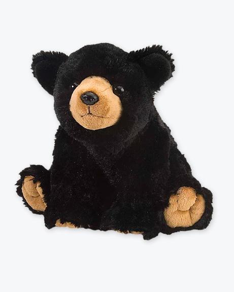 CK-Black-Bear