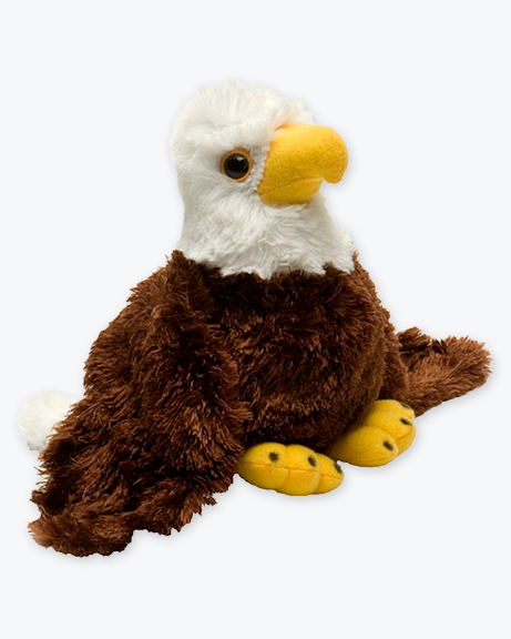 HM-Bald-Eagle
