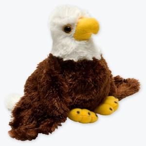 HM-Bald-Eagle