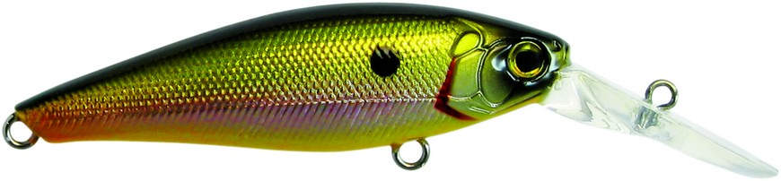 Light Green Shiner