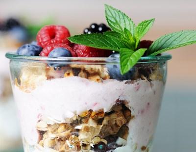 Homemade Greek Yogurt