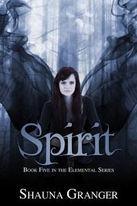 SPIRIT-large