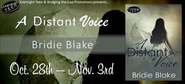 ADistantVoice tour banner