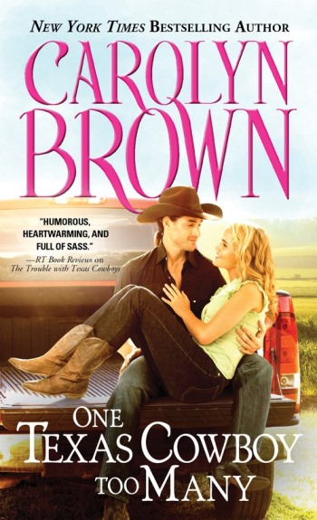 one texas cowboy